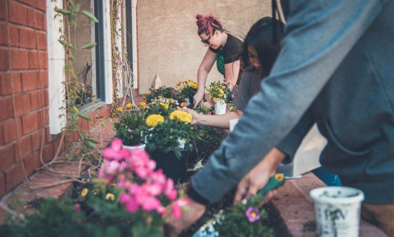 Photo of Je tuin zomerklaar maken