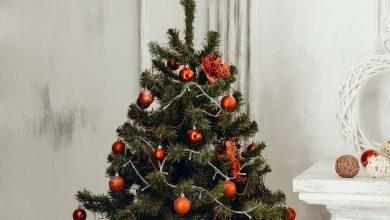 Photo of Alles over de populaire vlaggenmast kerstboom